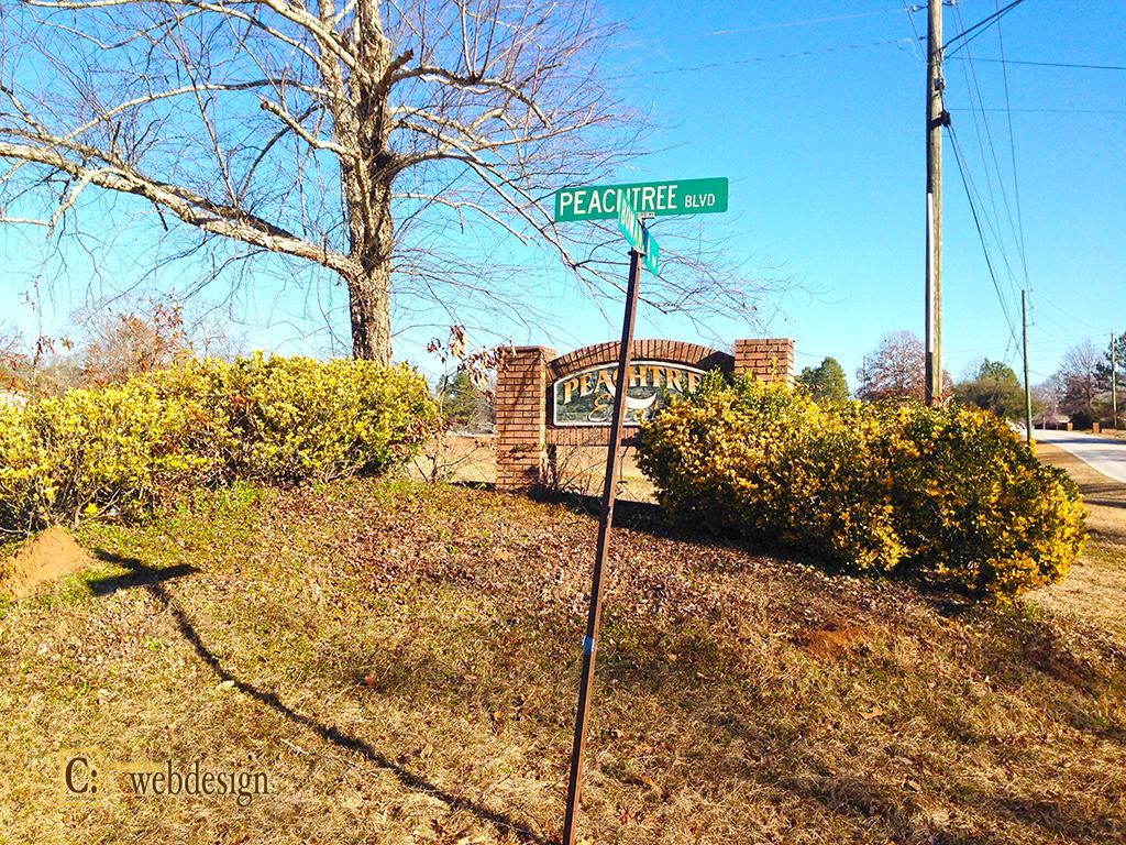 Peachtree Estates Subdivision