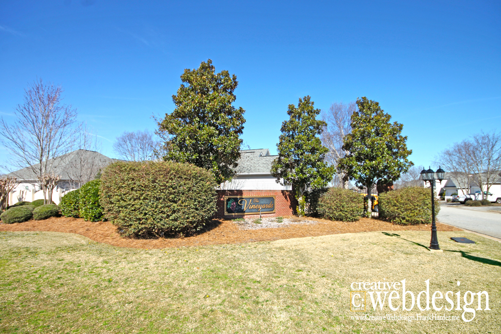 The Vineyards Subdivision in Byron, GA